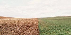 farmland-801817__340.jpg